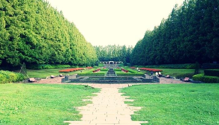 相模原公園の写真